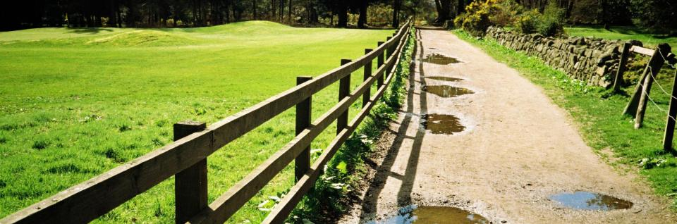 Ideal for pastures and farms, this open fencing is easy to maintain.